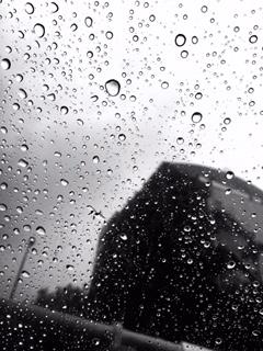雨に唄えば
